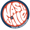 Red white and blue Retro Nashville Decal-11